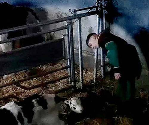 timeline_500x420_dairy_farm_abuse_investigation_2016_uk